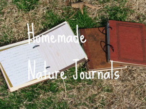 Craft: Homemade Nature Journals