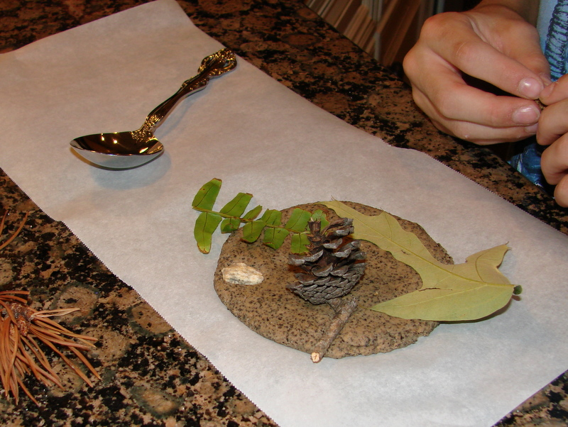 #homemade #fossils #craft @mylearningtable.com