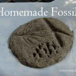 Homemade Fossils mylearningtable.com