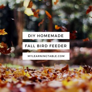 DIY Homemade Fall Bird Feeder Craft