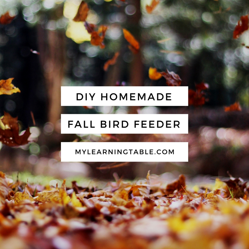 DIY Homemade Fall Bird Feeder Craft mylearningtable.com