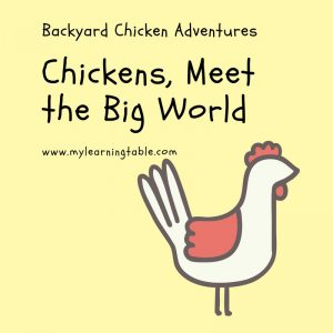 Chickens, Meet the Big World