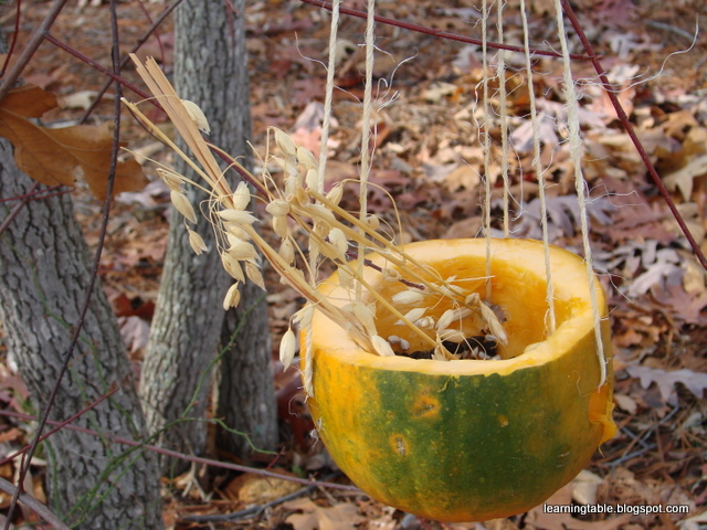 #nature #crafts #Thanksgiving @mylearningtable.com
