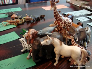 Hands-On Science: Animal Classification