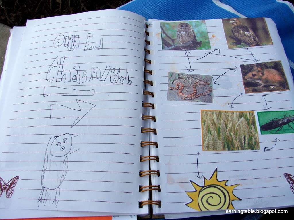 NATURE STUDY TO GO #naturestudy #homeschool mylearningtable.com