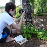 Nature Study for Teens @mylearningtable.com