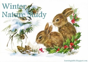 4 Things To Do for a Winter Nature Study