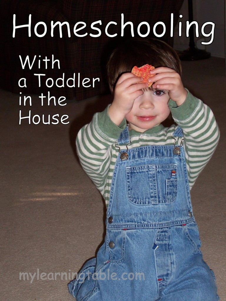 HOMESCHOOLING WITH A TODDLER IN THE HOUSE mylearningtable.com