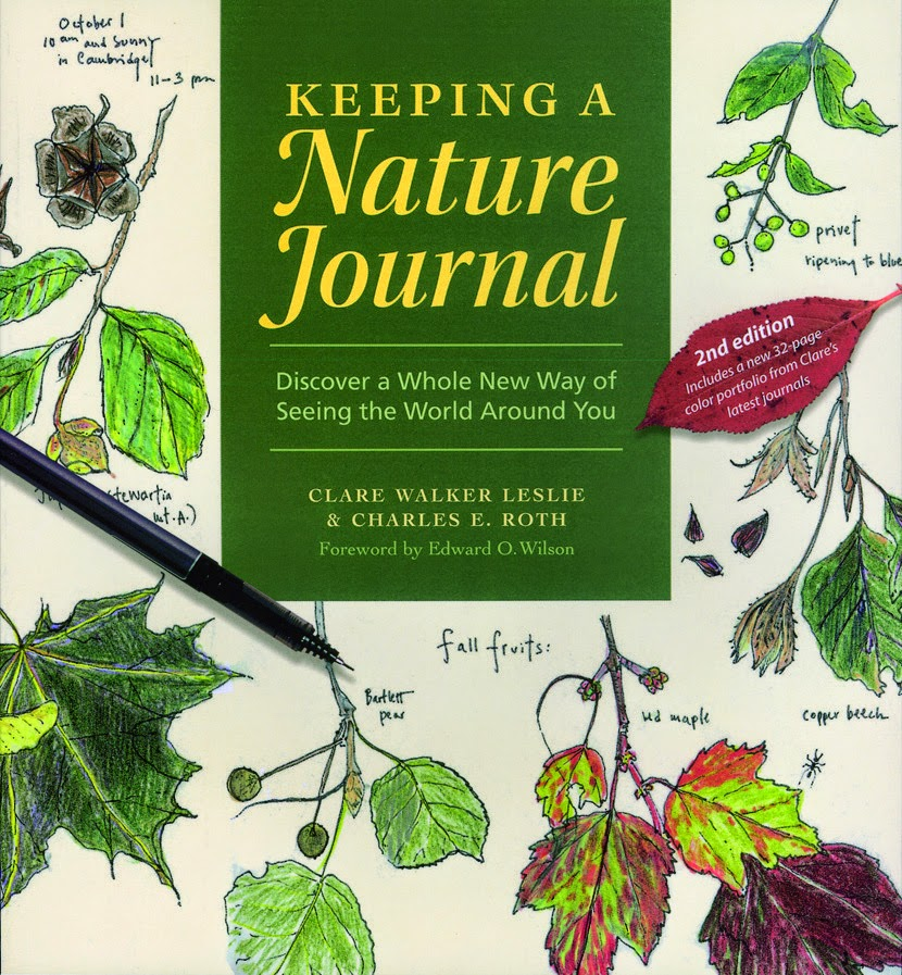 Nature journal @mylearningtable.com