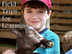 The Importance of Field Trips for Learning