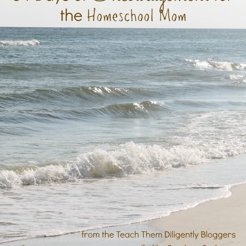 This book is lovingly dedicated to all the homeschool moms that are struggling, day in and day out, to love and educate their children in the ways of the Lord. Living in a world, yet not of it, comes with many trials. Yet, God is faithful. Each of us, as contributors, is praying that the Lord will encourage your hearts as you read these words.