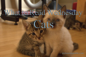 What to Read Wednesday: Cats mylearningtable.com