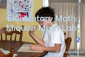 Elementary Math: Miquon Math Lab Materials mylearningtable.com