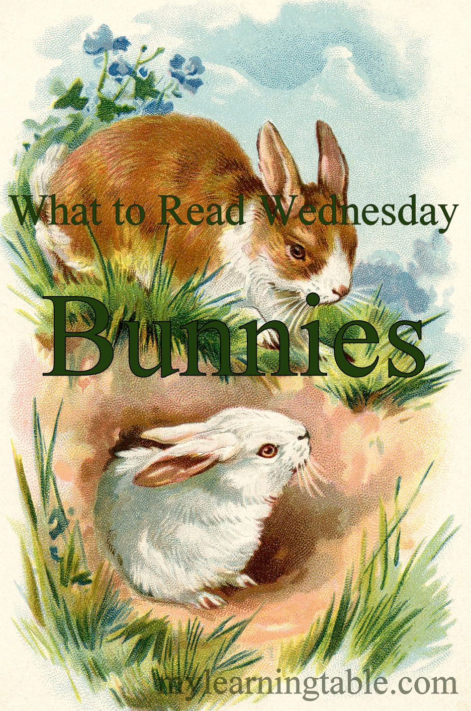 What to Read Link Up: Bunnies