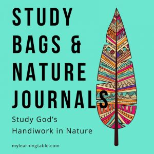 Study Bags and Nature Journals