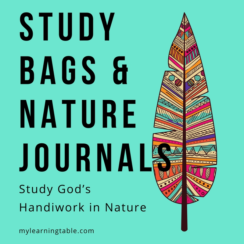 Study Bags and Nature Journals: Study God's Handiwork in Nature. Nature study ideas for homeschool children.